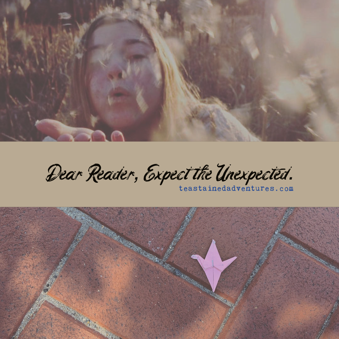 Dear Reader, Expect the Unexpected